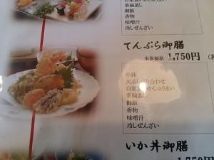 Saga-squid (5)